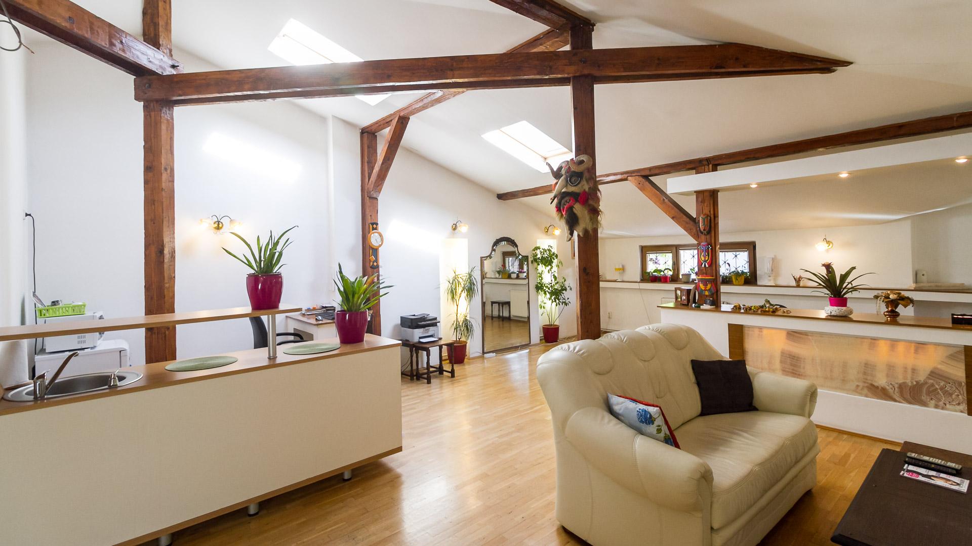 living-apartament-3-camere-mansarda-vila-parc-carol