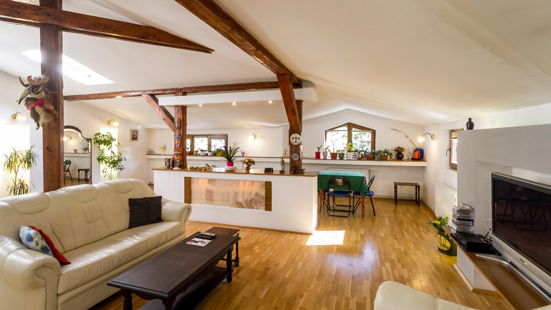 spatiu-socializare-living-apartament-3-camere-2-bai-mansarda-vila-arhitectura-interbelica